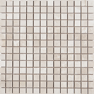 2x2 Ice Beige Mosaic Polished